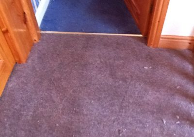 hallway carpets stoke
