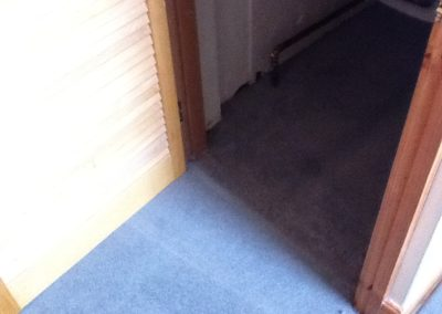 stoke carpets